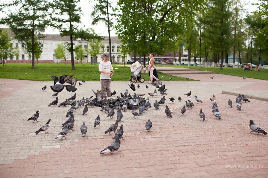 Приключения в уездном городе :)